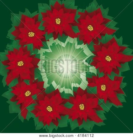 Floral Wreath Of Christmas Poinsettia