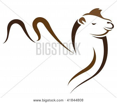 Vector image of an camel