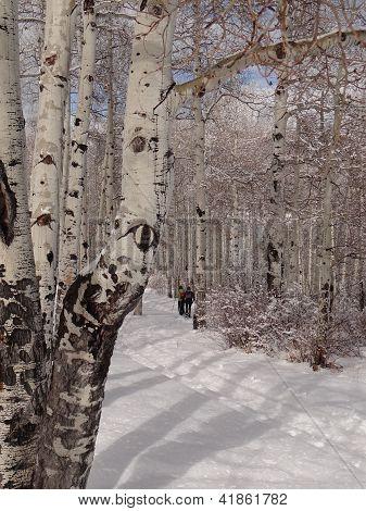 Frauen, Schneeschuhwandern