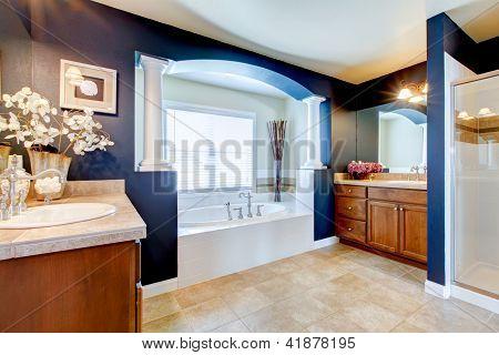 blau Luxus-Badezimmer mit weißen Wanne, Waschbecken und Dusche.