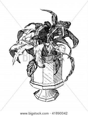 Pot Plant Line-art