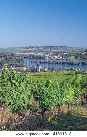 Ruedesheim,Rhine River,Germany