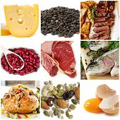 Food sources of protein, including cheese, lentils, red and white meat, kidney beans, fish, tuna, nu