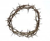 stock photo of biblical  - Crown of thorns isolated over white background - JPG
