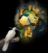 image of tragic  - Middle East conflict as a burning map of Egypt Syria Iran Israel Saudi Arabia Libya Yemen Iraq with a white dove holding a burning olive branch for the tragedy of war and political problems - JPG