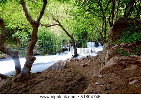Khurmal Forrest In Mountains Of Autonomous Kurdistan Region Near Iran
