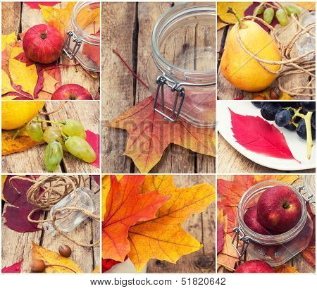 autumn collage their fruits and berries