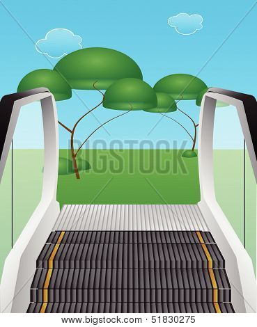 Escalator From The Ground