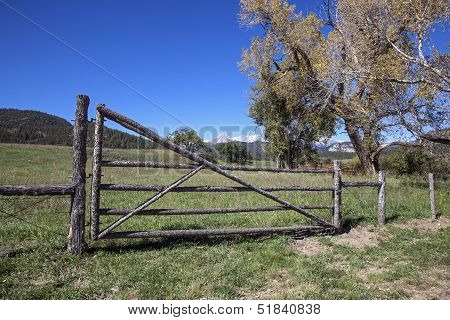 Wood Gate and Fence