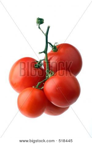 Cluster Of Red Tomatoes