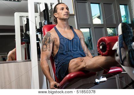 Quadriceps Exercises