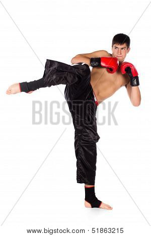 Young Male Kickboxer