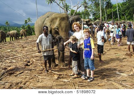 Children Hug With Elephants In The Jungle Camp