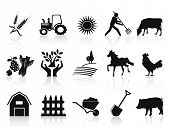 stock photo of working animal  - isolated black farm and agriculture icons set on white background - JPG