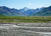 stock photo of denali national park  - The Toklat River in Alaska - JPG