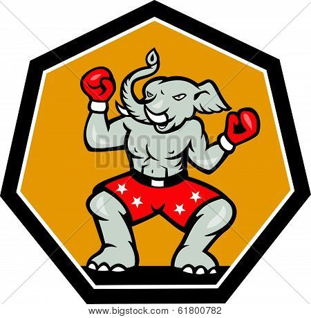 Elephant Mascot Boxer Cartoon