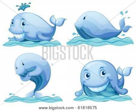 Illustration of the blue whales on a white background