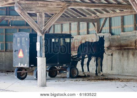 Mennonite Carriage Parking