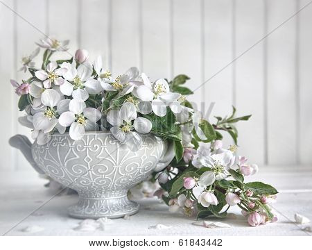 Apple blossom flowers in vase on table