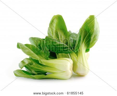 Bok Choy (chinese Cabbage) Isolated On White