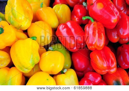 Red And Yellow Chilli