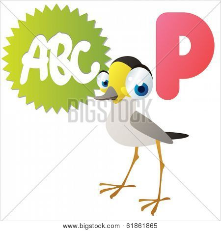 P is for Plover