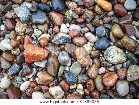 Baltic Sea Stones And Pebbles.