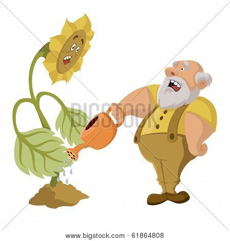 Old Man And Gmo