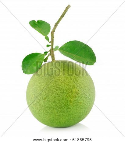 Pomelo  Fruit On White Backgorund