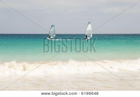 two windsurfers racing.
