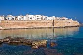 pic of fortified wall  - Fortified wall of Monopoli - JPG