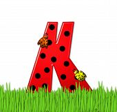pic of letter k  - The red letter K in the alphabet set  - JPG