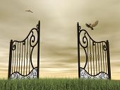 picture of bird fence  - One vintage black open gate in nature with two birds flying around by brown cloudy day - JPG