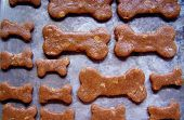 image of biscuits  - Baking homemade dog biscuits - JPG