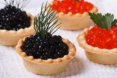 Four Tartlets With Red And Black Fish Caviar Horizontal.