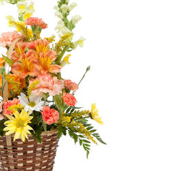 picture of gift basket  - Flower arrangement including carnations irises daisy greenery in a wicker basket on a white background - JPG
