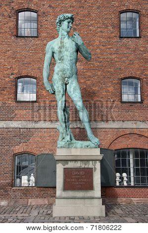 David Statue By Michelangelo In Copenhagen.
