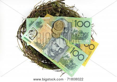 Money In The Nest Savings Investment Concept With Australian Hundred And Fifty Dollar Notes And One