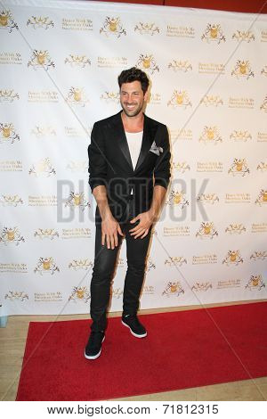 LOS ANGELES - SEP 10:  Maks Chmerkovskiy at the Dance With Me USA Grand Opening at Dance With Me Studio on September 10, 2014 in Sherman Oaks, CA