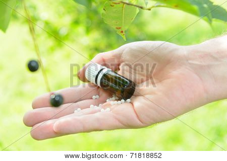 Homeopathic lactose sugar globules on hand with plants outdoors.