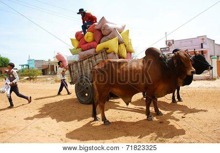 Wagon, Transport At Vietnam Countryside