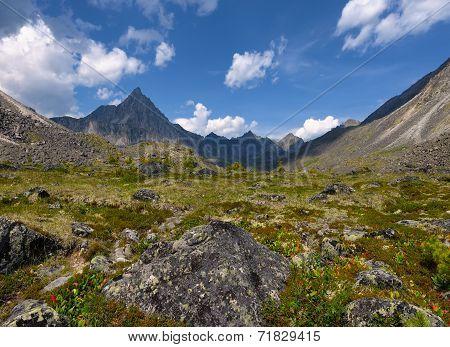 Alpine Tundra. Eastern Sayan