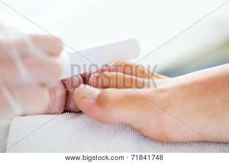 Man Doing Pedicure In Salon. Beauty Concept.