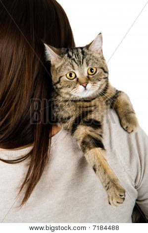 Cat On A Shoulder