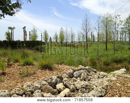 Kissimmee Lakefront Park - Rain Garden