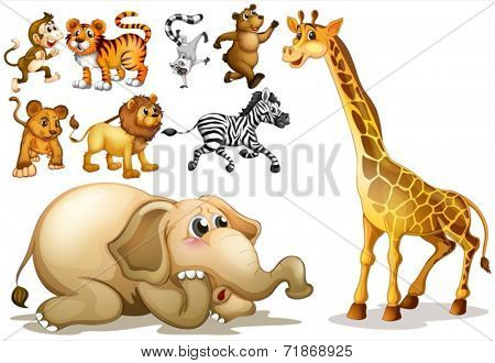 Illustration of a set of many animals