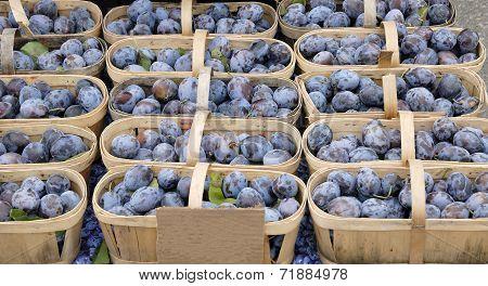 Basket full of fresh Plums at the Farmer's market