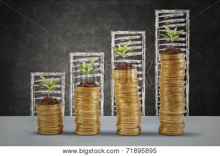 Plant Growing Up On The Money Coins