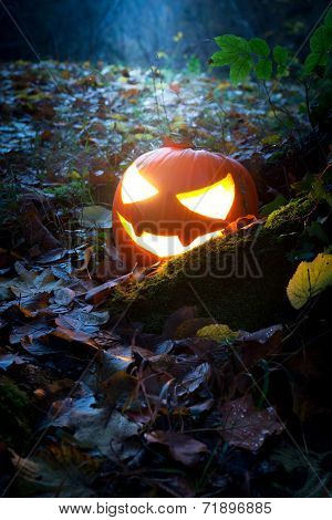 Glooming Halloween Lantern In The Forest