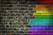 pic of transgendered  - Dark brick wall texture  - JPG